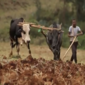 Two startups win funding in FinTech for Agriculture 2015